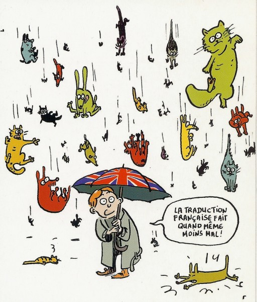 its-raining-cats-and-dogs