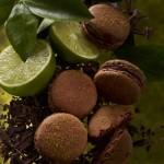 Sur les traces du chocolat Valrhona