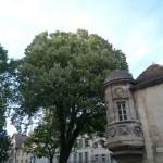 Balade dans Dijon