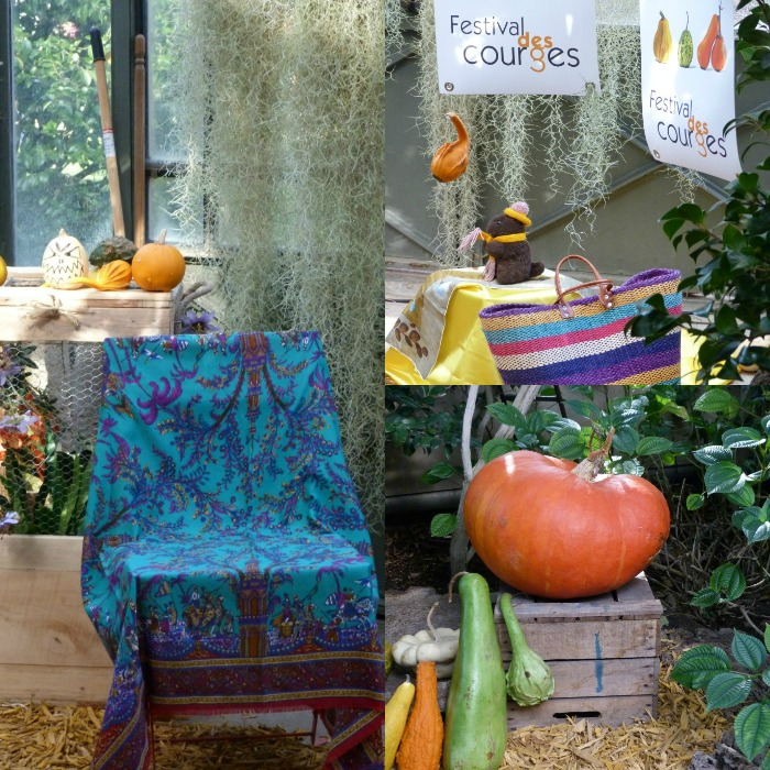 conte courge collage