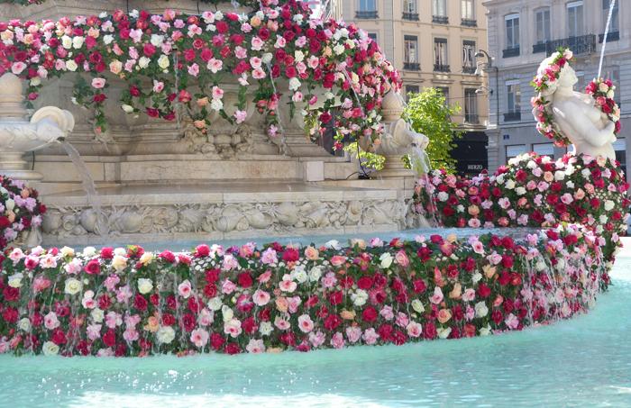 fête de la rose 6