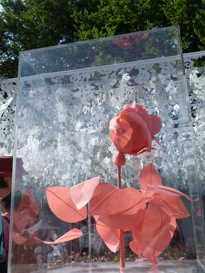 fête des roses tête d'or 7