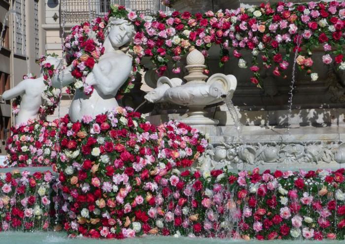 Lyon tout en roses !