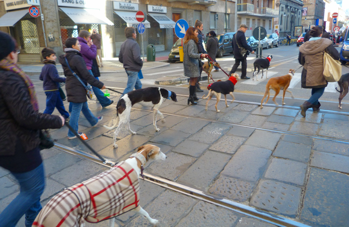 Turin Noël 17
