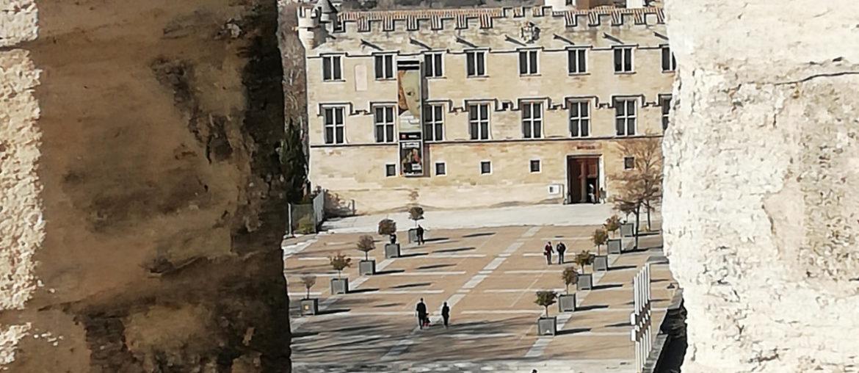 10 choses à faire à Avignon